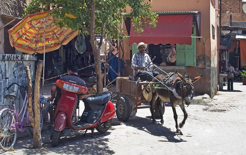 Marrakech-10130.jpg