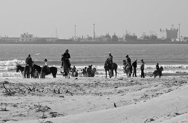 Les cavaliers sur la plage