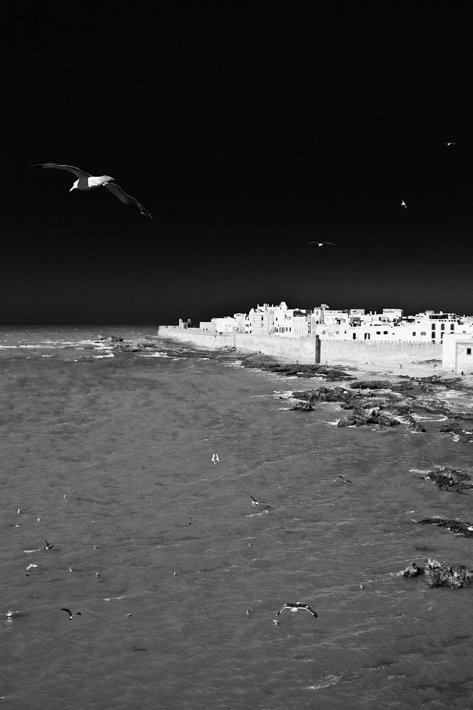 Majestueuse Essaouira